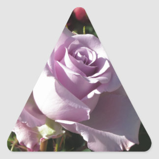Single violet rose flower with red roses around triangle sticker