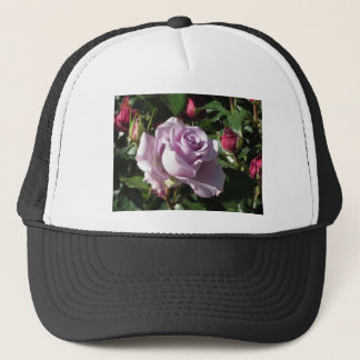 Single violet rose flower with red roses around trucker hat