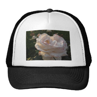 Single white and red streaked rose flower trucker hat