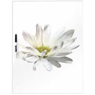 Single White Daisy Dry Erase Board