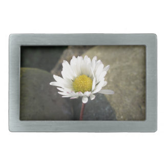 Single white daisy flower between the stones belt buckle