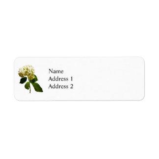 Single White Hydrangea Return Address Label