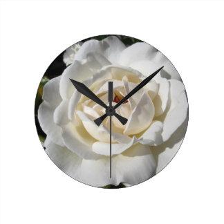 Single white rose flower in spring round clock