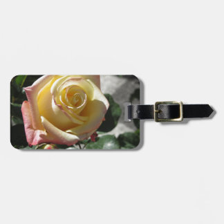 Single yellow rose flower in spring luggage tag