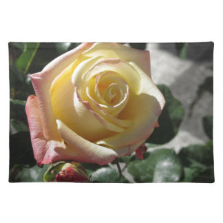 Single yellow rose flower in spring placemat