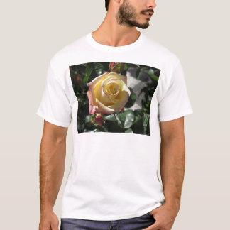 Single yellow rose flower in spring T-Shirt