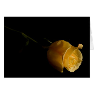Single Yellow Rose - Note Card