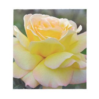 Single yellow rose notepads