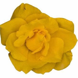 Single Yellow Rose Photo Sculpture Button