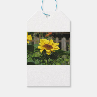 Single yellow sunflower with green leaves gift tags