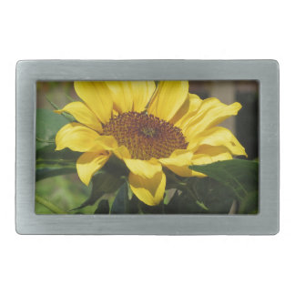 Single yellow sunflower with green leaves rectangular belt buckles