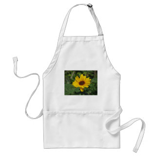 Single yellow sunflower with green leaves standard apron