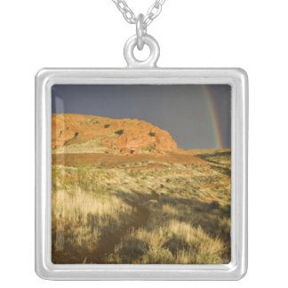 Singletrack at Red Cliffs Desert Preserve near Silver Plated Necklace