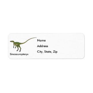 Sinosauropteryx Return Address Label