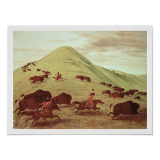 Sioux Indians hunting buffalo, 1835 (oil on canvas Posters