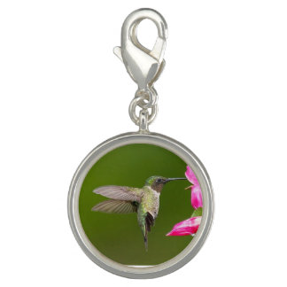 Sipping Hummingbird - Round Charm, Silver Plated Photo Charm