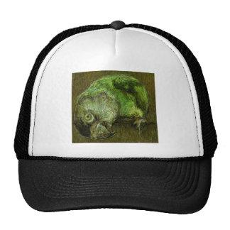 Sir Digby Mesh Hat
