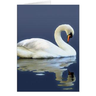 Sir Swan Card