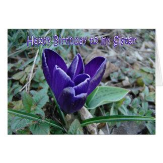 Sister Bday Crocus Greeting Card