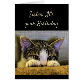 Sister can't Hide It's your Birthday Cute Kitten Card