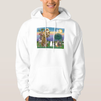 Sister Frances Blessing 5 cats Hoodie