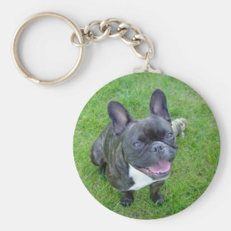 sitting 2 french bulldog keychain