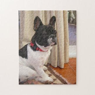 sitting 3 french bulldog.png jigsaw puzzle