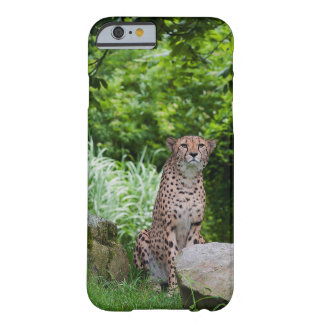 Sitting Cheetah Barely There Phone Case