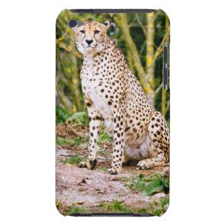 Sitting Cheetah Portrait iPod Case-Mate Case
