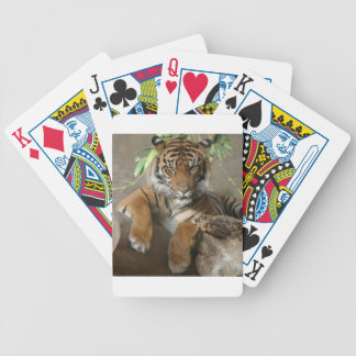 Sitting Pretty Bicycle Playing Cards