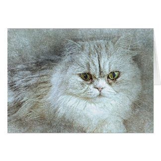 Sitting Pretty Kitty | Abstract | Watercolor Card