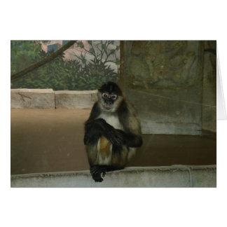 Sitting Pretty Monkey Card