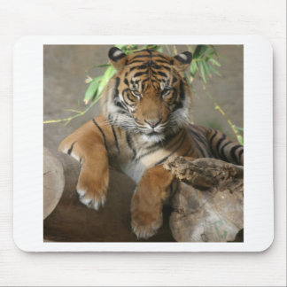 Sitting Pretty Mouse Pad