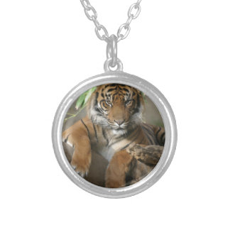 Sitting Pretty Silver Plated Necklace