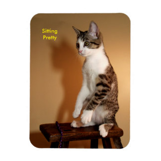 Sitting Pretty Upright Tabby Cat Magnet