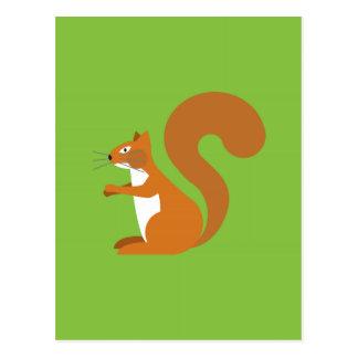 Sitting Squirrel Postcard