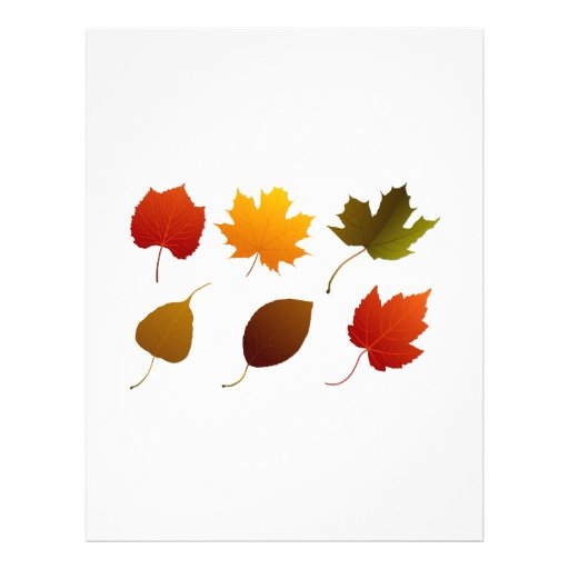 six fall colour leaves nature image graphic.png personalized flyer
