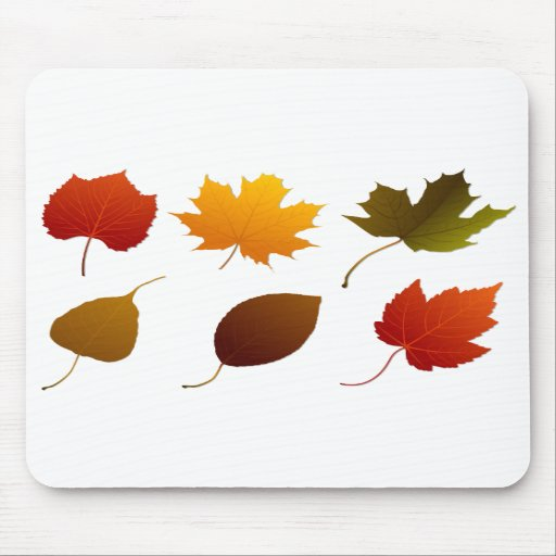 six fall colour leaves nature image graphic.png mouse pad