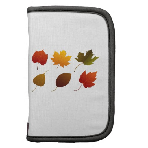 six fall colour leaves nature image graphic.png planner