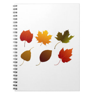 six fall colour leaves nature image graphic.png spiral notebooks