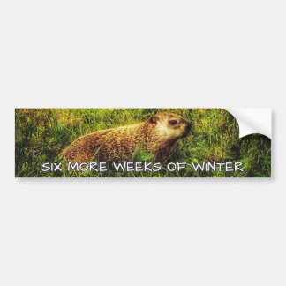 Six more weeks of winter bumper sticker