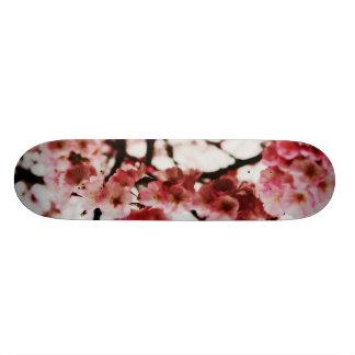 Skate Board Blossoms
