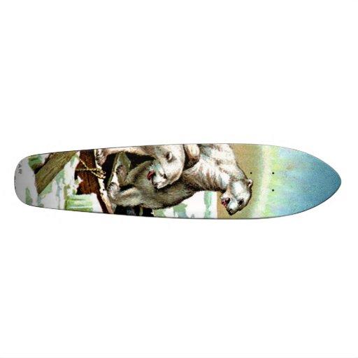 skateboard - Polar Bear