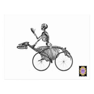 Skelebike rider postcard