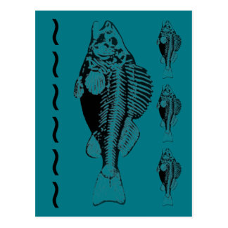 Skeletal Fish Teal Background Postcard