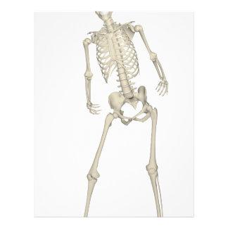 Skeleton #7 letterhead