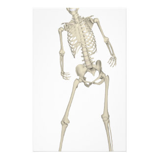 Skeleton #7 stationery