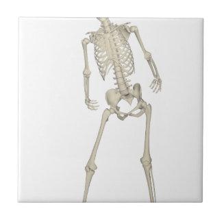 Skeleton #7 tile