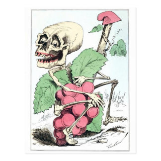 Skeleton grape theif vintage postcard