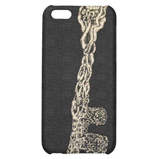 Skeleton Key iPhone 5C Cover